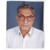Vishnu P. Kapoor