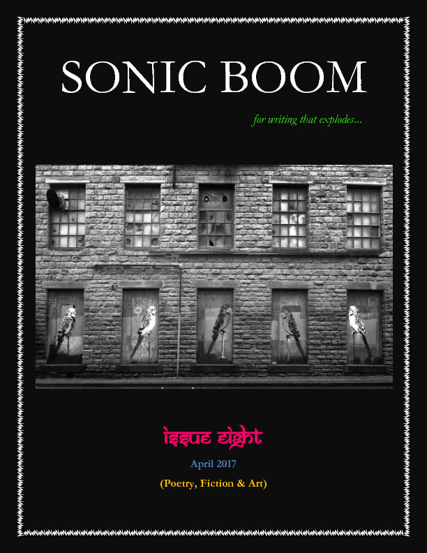 sonicboom8.pdf