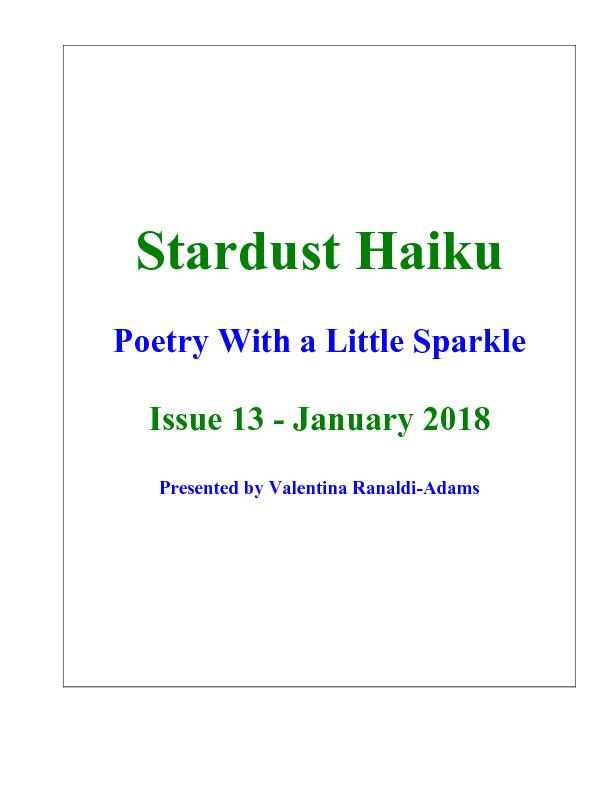Stardust_Issue13.pdf