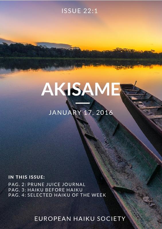 akisame_22-1.pdf