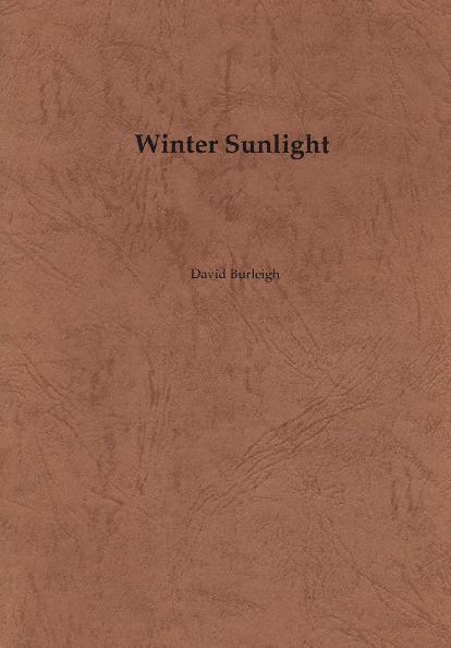 burleigh_wintersunlight.pdf