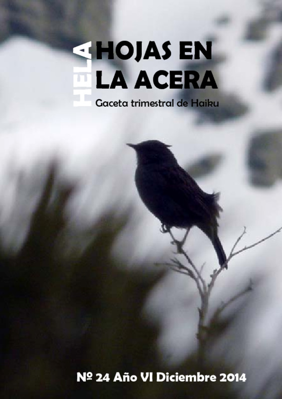 Hojas En La Acera Nro 24.pdf