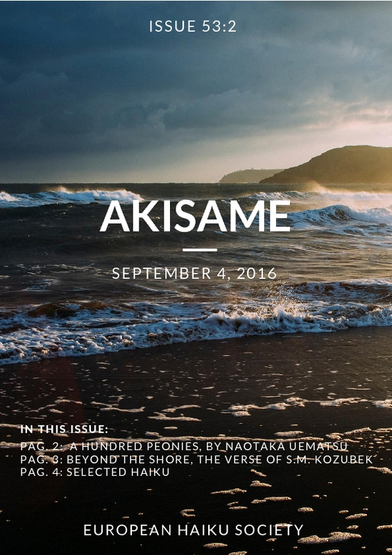 akisame_Issue_53.pdf