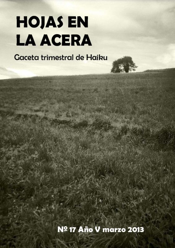 Hojas En La Acera Nro 17.pdf