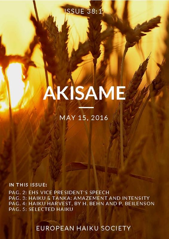 akisame_issue38(1).pdf