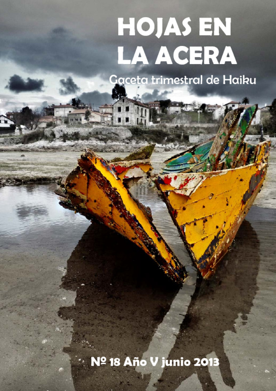 Hojas En La Acera Nro 18.pdf