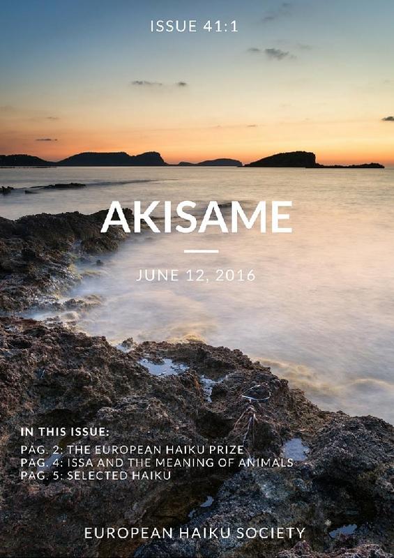 akisame_issue41.pdf