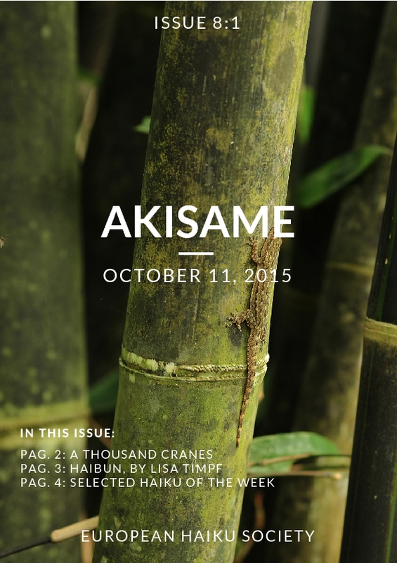 akisame_8.1.pdf