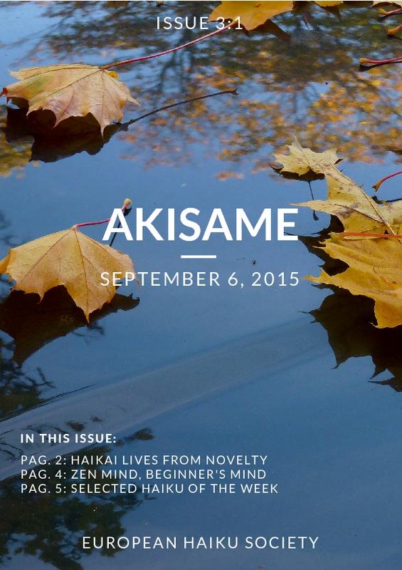 akisame_3.1.pdf