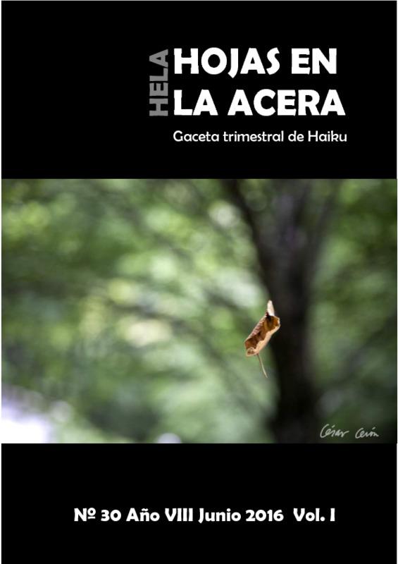 Hojas En La Acera Nro 30.1.pdf