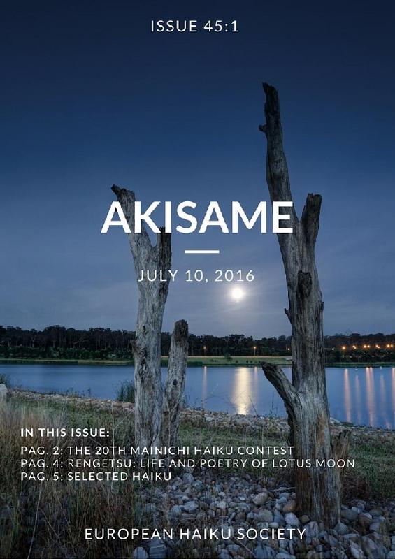 akisame_issue45.pdf