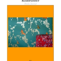 roadrunner_may2009.pdf