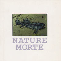 anonymous_naturemorte.pdf