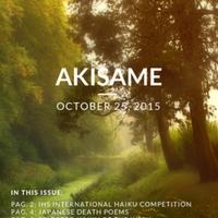 akisame_10.1.pdf