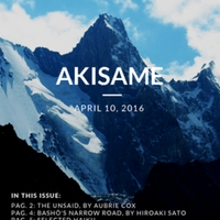 akisame_issue33.pdf