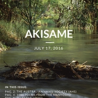 akisame_issue46.pdf
