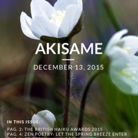 akisame_17.1.pdf