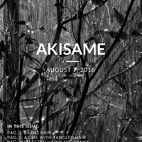 akisame_issue49.pdf