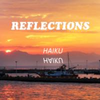 serban_reflections.pdf