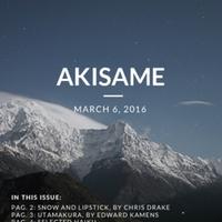 akisame_29_2016.pdf