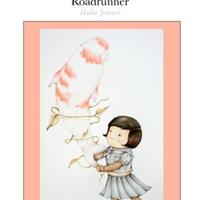 roadrunner_feb2009.pdf