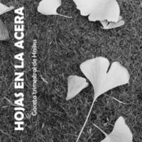 Hojas En La Acera Nro 12 (corregida 2).pdf