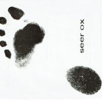 Seer-Ox_1.pdf