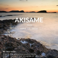 akisame_issue41.pdf