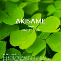akisame_issue42.pdf