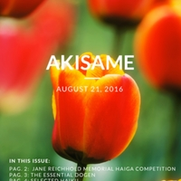 akisame_Issue_51.pdf