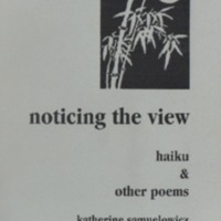 samuelowicz_noticingtheview.pdf