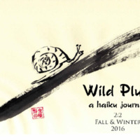 wild-plum_2.2_fall-winter2016.pdf