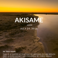 akisame_Issue_47.pdf