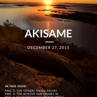 akisame_19.1.pdf