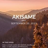 akisame_5.1.pdf