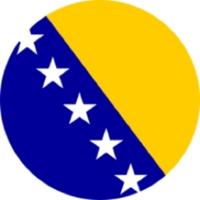 bosniaherzegovina_flag.png