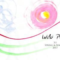 wildplum_springsummer_2017.pdf