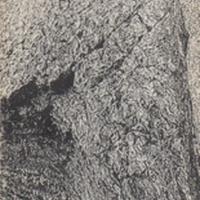 partridge_thewizardsrook.pdf