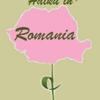 serban_haikuinromania.pdf
