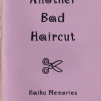 sheirer_anotherbadhaircut.pdf
