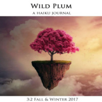 wildplum_winter2017.pdf