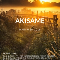 akisame_Issue 31_2016.pdf