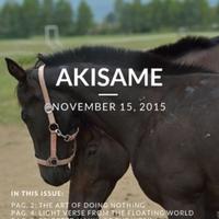 akisame_13.1.pdf