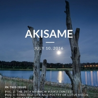 akisame_issue45.pdf