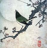 moonbird2