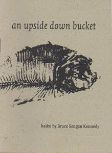 kennedy_upsidedownbucketcover