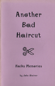 sheirer_anotherbadhaircutcover