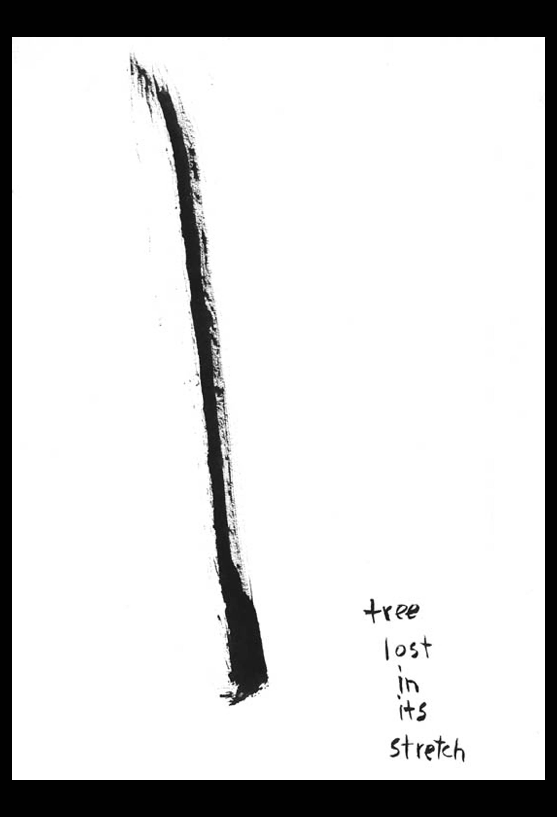 tree lost (1968 or 1969)