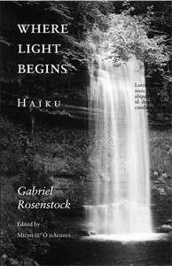 rosenstock_wherelightsbegins