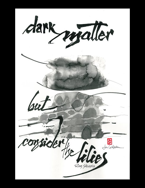 """Dan Schwerin — """"dark matter"""""""